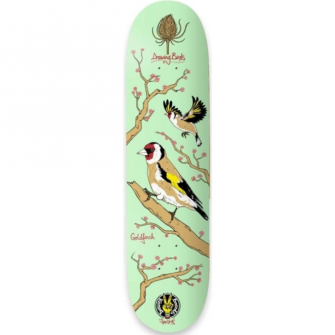 """Drawing Boards Goldfinch Deck - 8.1"""""""