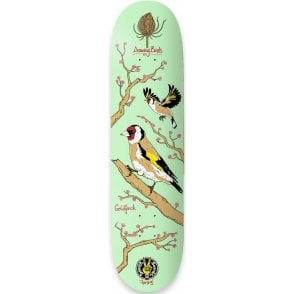 Drawing Boards Goldfinch Deck - 8.1""