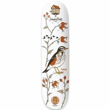 Drawing Boards Redwing Deck - 8.0""
